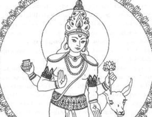 Направление практики: Чандра Намаскара Йога