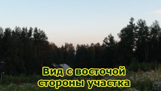 фото-дом-6